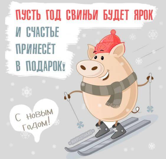Картинки и открытки поздравления с Новым годом свиньи 2019 5