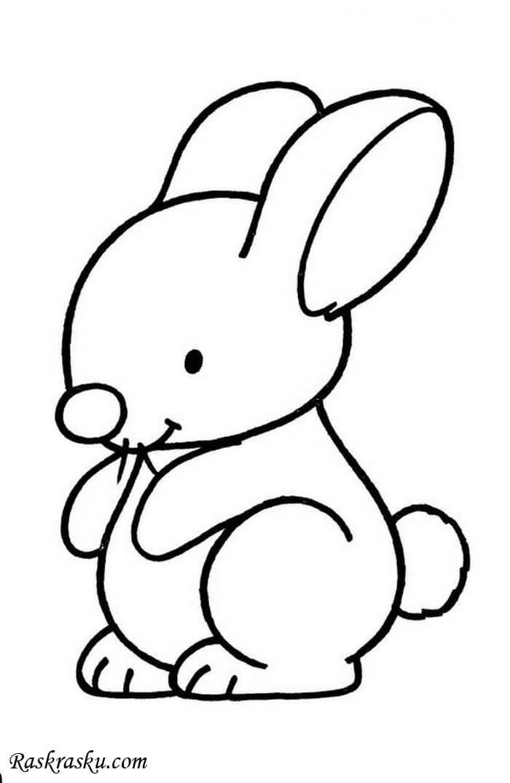 Простые раскраски животных для детей и малышей 5