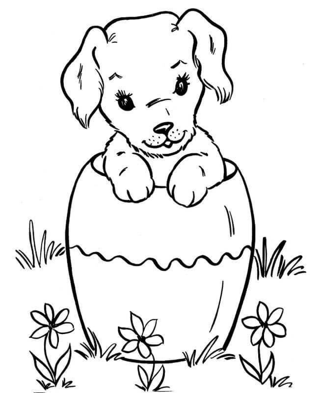 Простые раскраски животных для детей и малышей 6