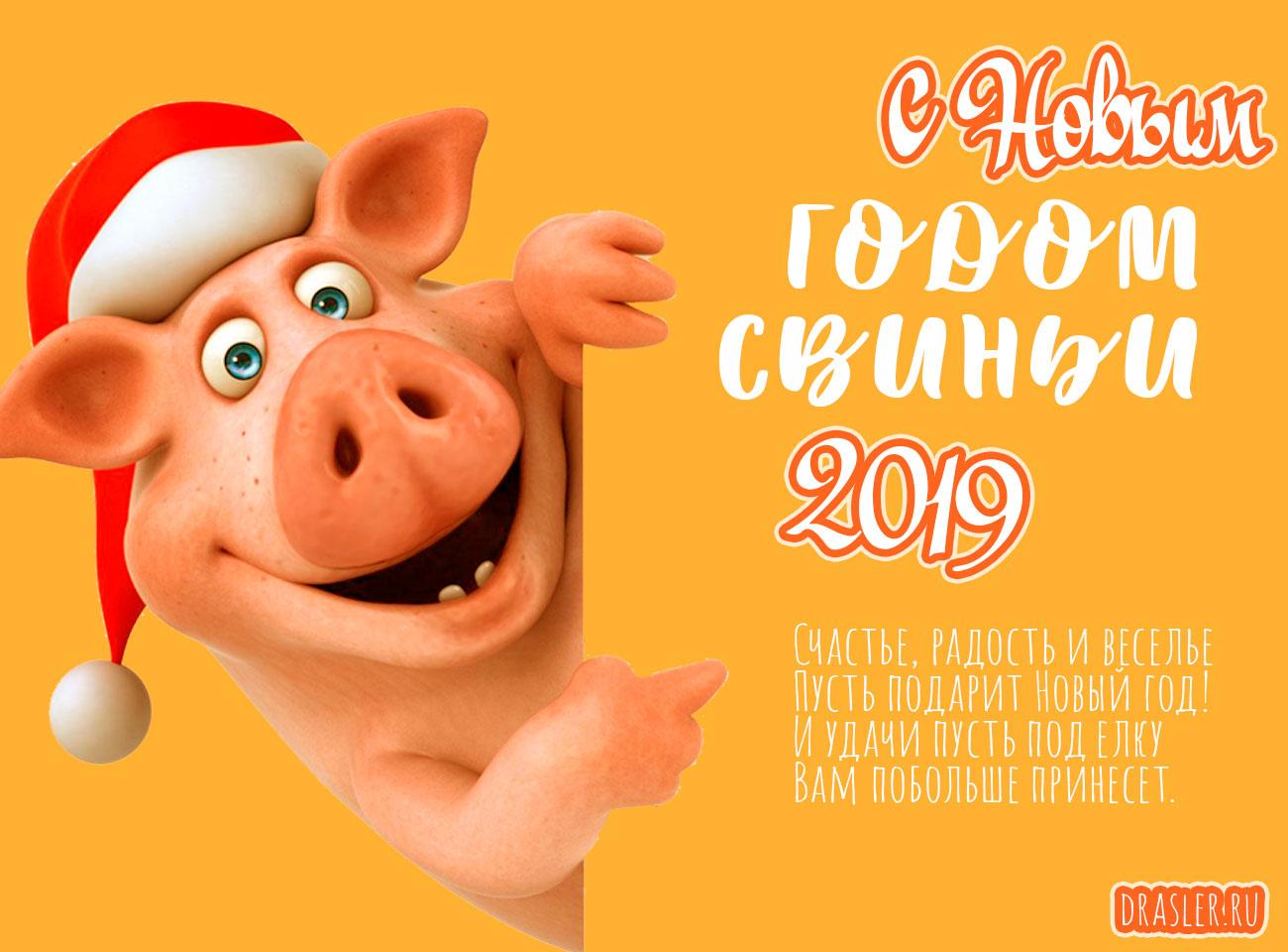 Красивые картинки с Новым годом свиньи 2019 - поздравления 1
