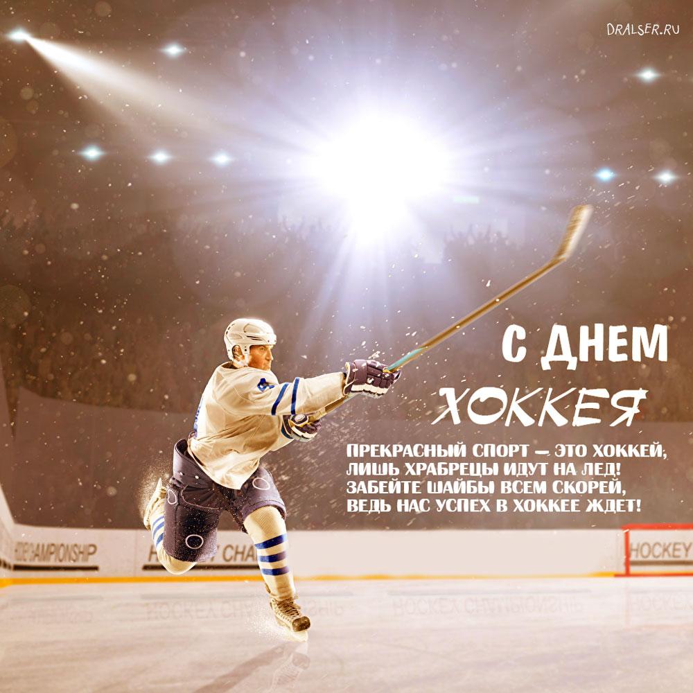 Картинки с Днем Хоккея - самые прикольные открытки 11