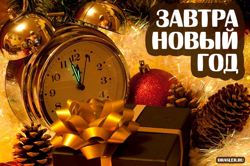 Прикольные картинки А завтра Новый год! - скачать бесплатно 7