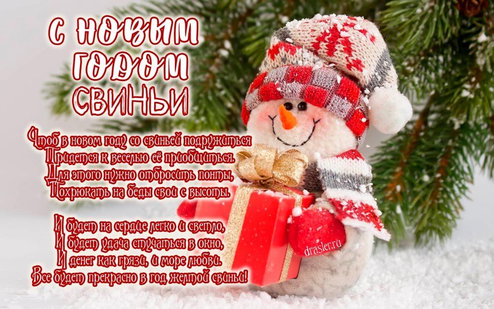 Картинки и открытки поздравления с Новым годом свиньи 2019 14