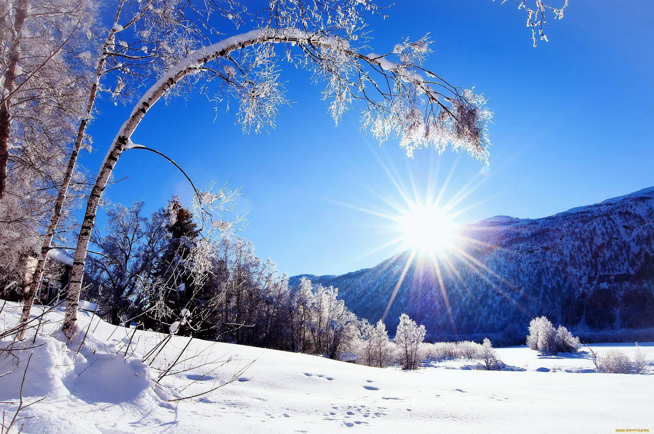 Зимнее настроение - фото и картинки красивые, приятные 13