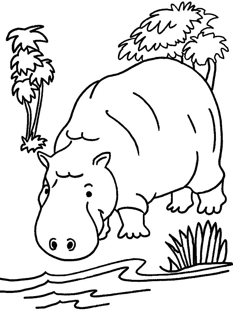 Простые раскраски животных для детей и малышей 30