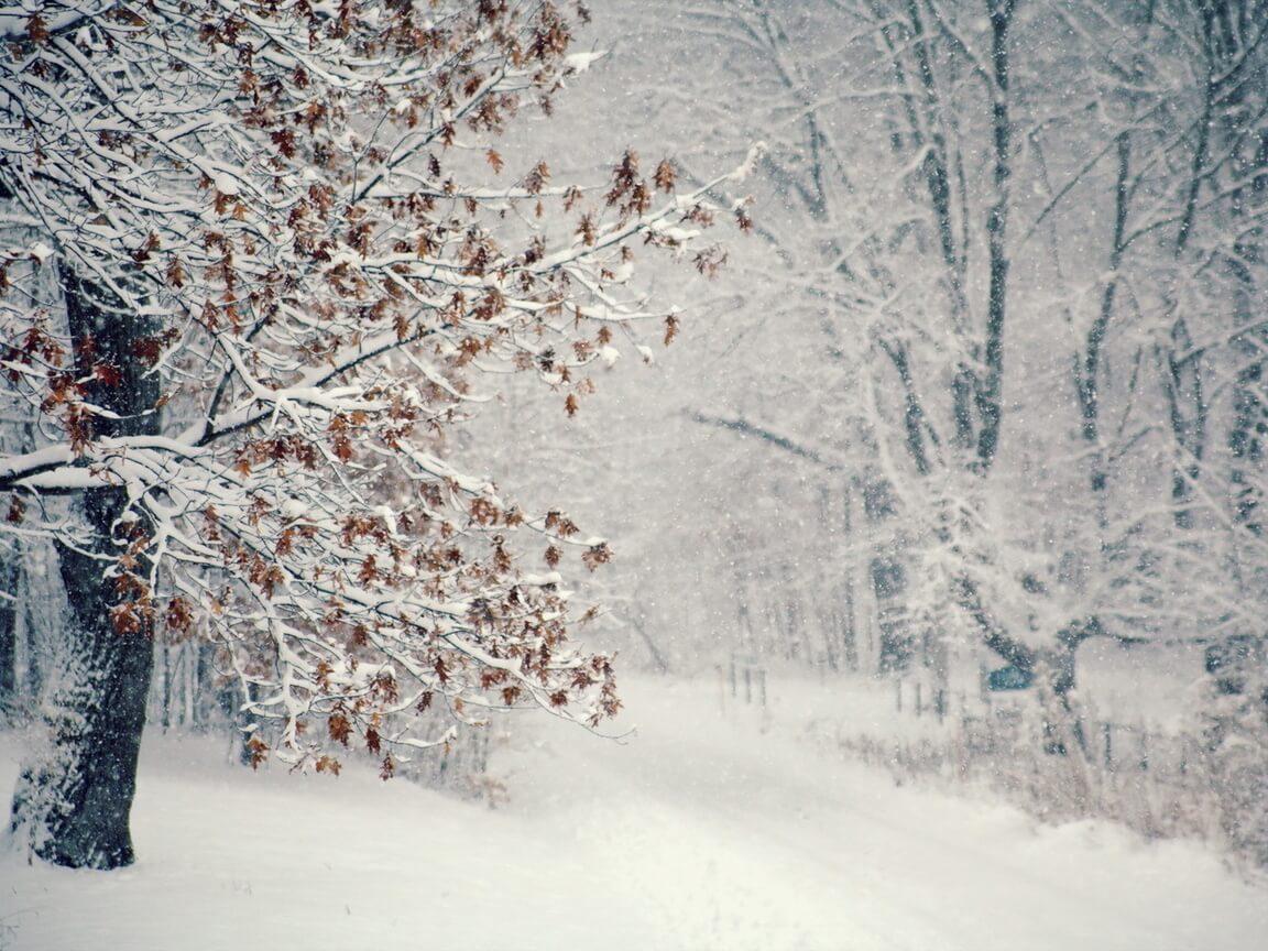 Скачать обои зимних картинок на телефон для заставки 4