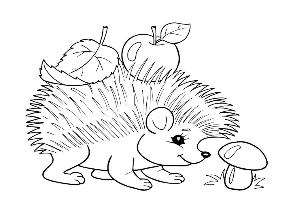 Простые раскраски животных для детей и малышей 17