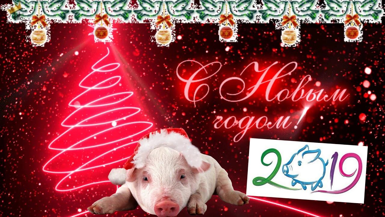 Красивые картинки с Новым годом свиньи 2019 - поздравления 12