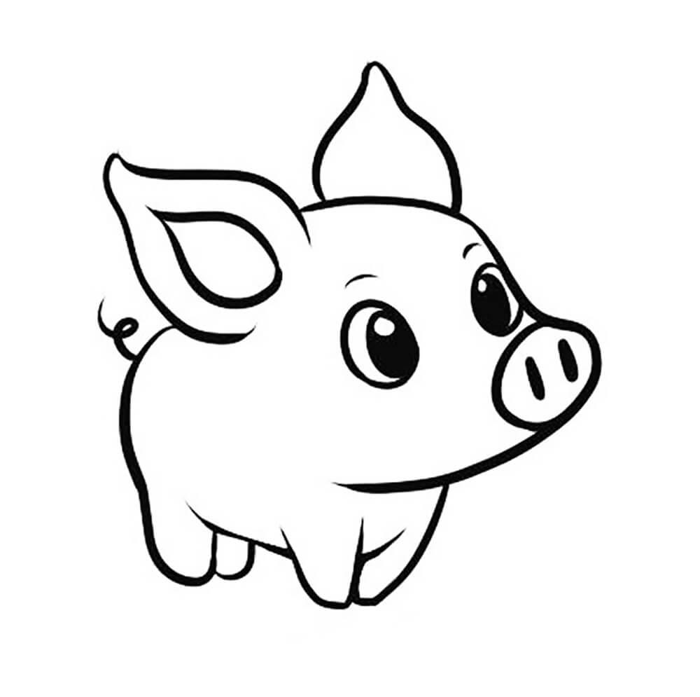Прикольные картинки свиньи для срисовки - подборка 24