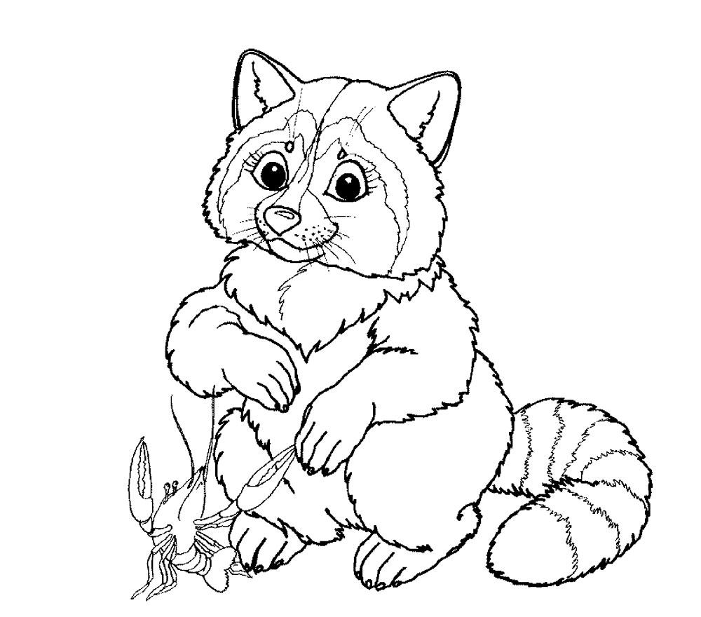 Простые раскраски животных для детей и малышей 22