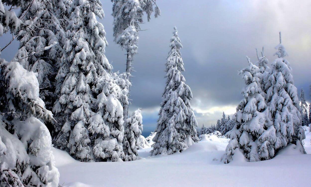 Скачать обои зимних картинок на телефон для заставки 11