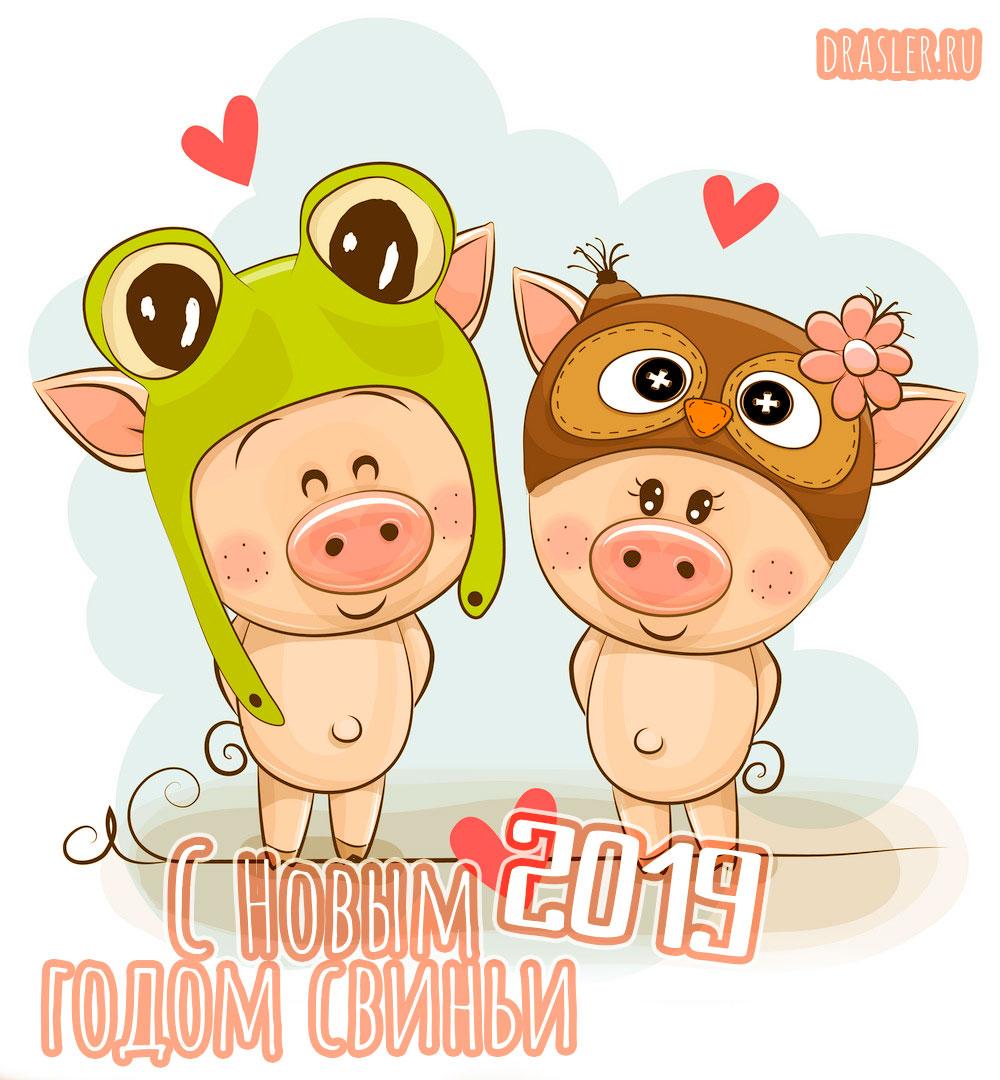 Красивые картинки с Новым годом свиньи 2019 - поздравления 22