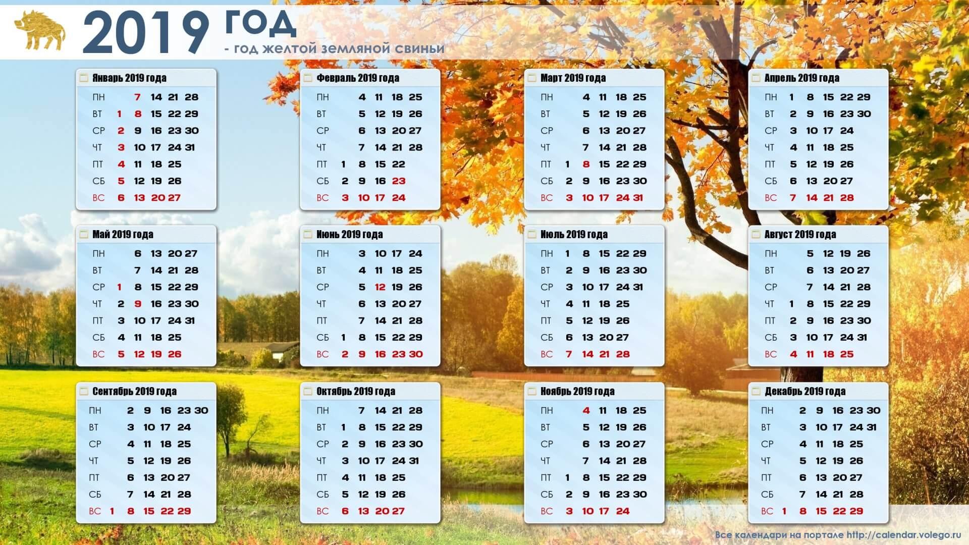 Красивые календари на 2019 год - отличная подборка 13