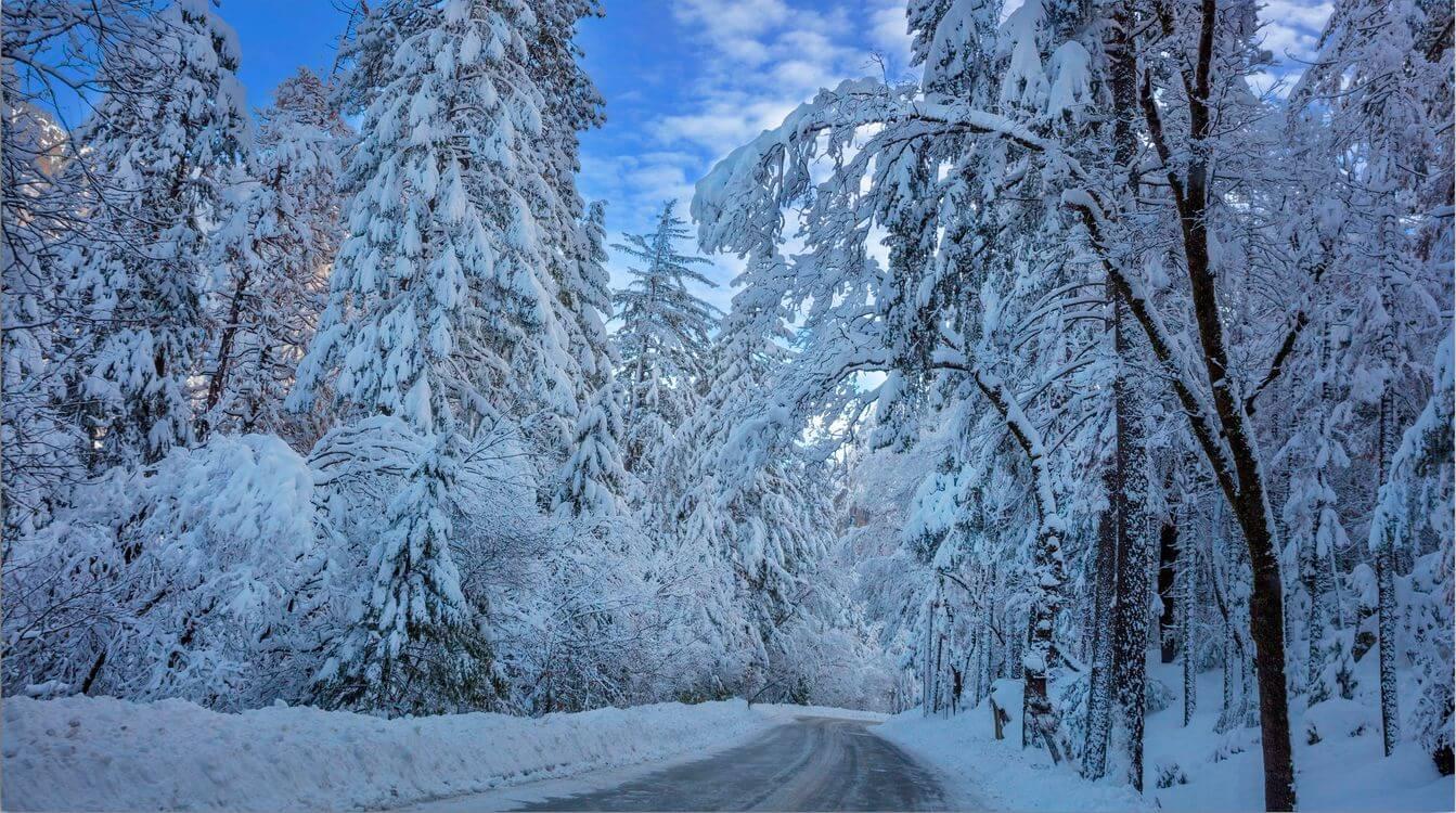 Скачать обои зимних картинок на телефон для заставки 14