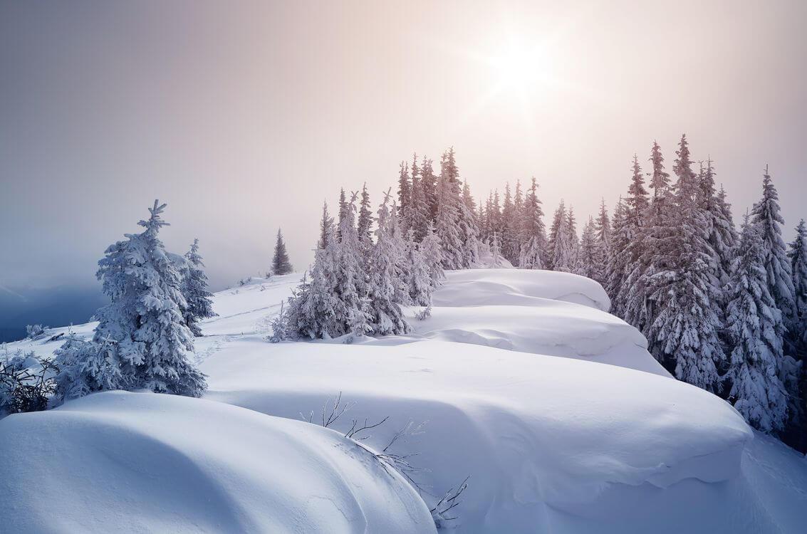 Скачать обои зимних картинок на телефон для заставки 18