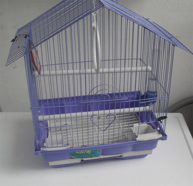 Дом для попугая - каким он должен быть 2