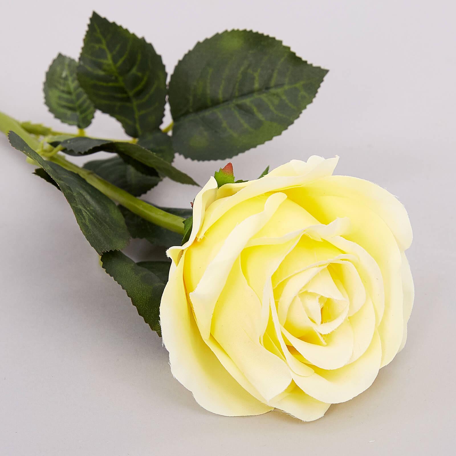 Удивительные картинки с розами, интересная сборка 27 фото 4