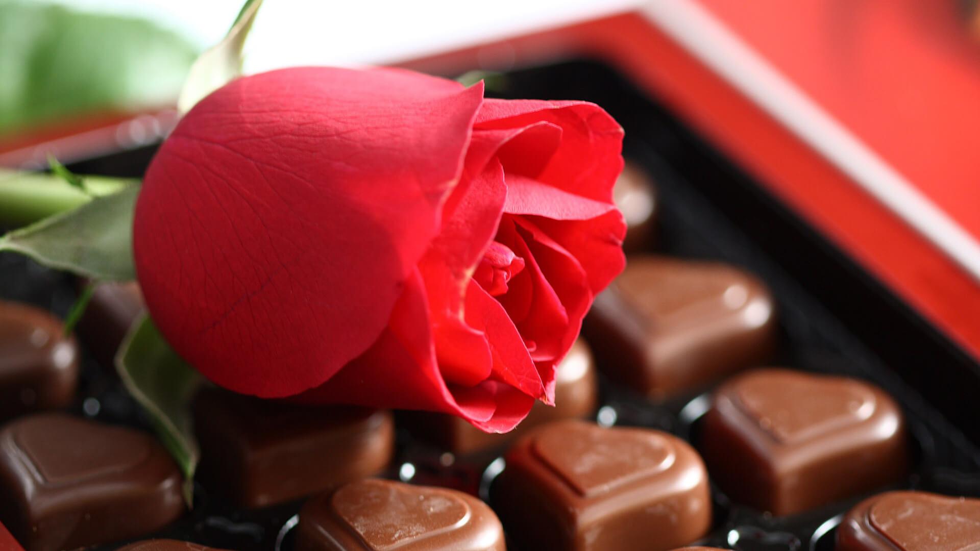Милые и романтические картинки для любимой - скачать (20 фото) 1
