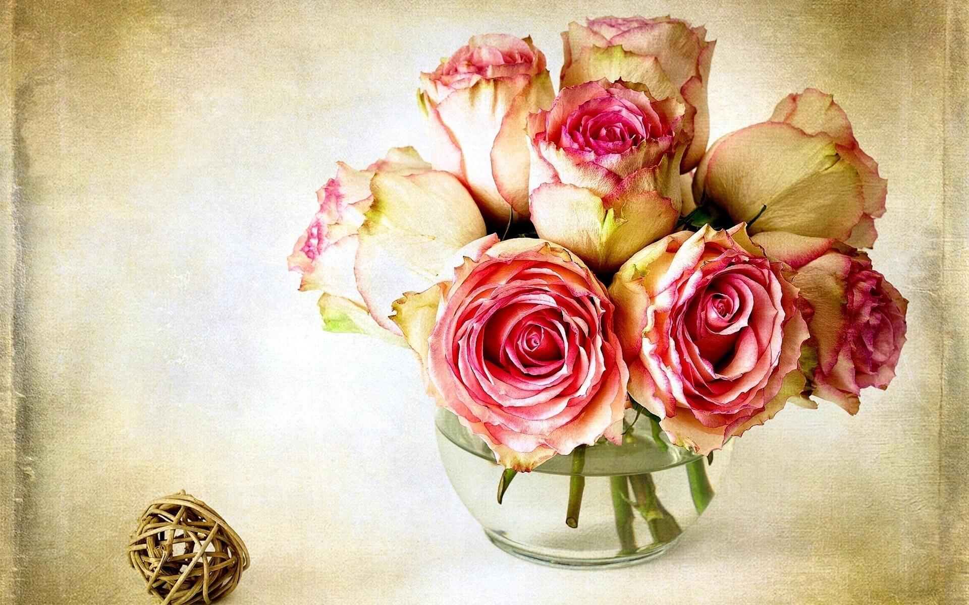Удивительные картинки с розами, интересная сборка 27 фото 18