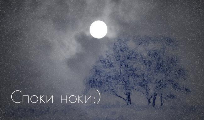 Спокойной зимней ночи - картинки и открытки (14 фото) 11