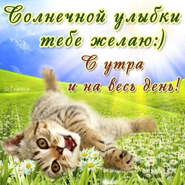 Поздравление С Добрым Утром Прикольные Игорю