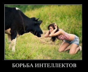 Смешные фото про девушек - веселые, ржачные, прикольные 5