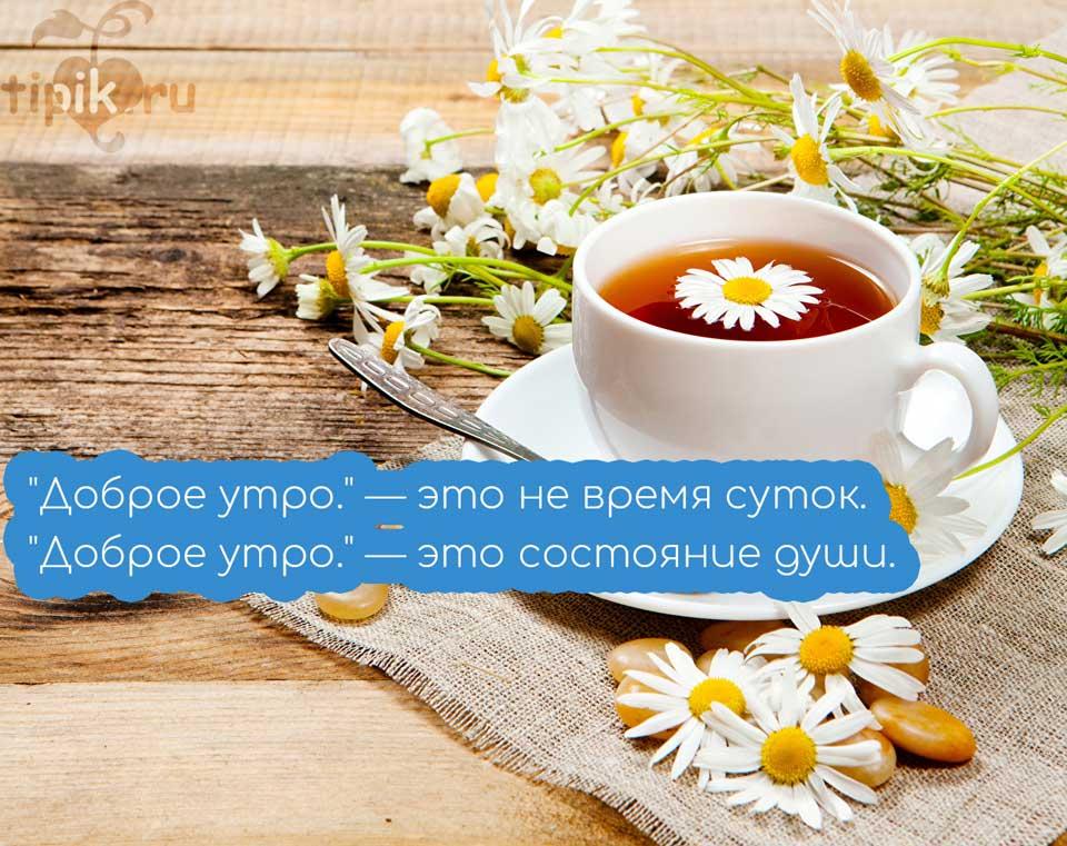 Доброе утро картинки необычные красивые с надписью весна