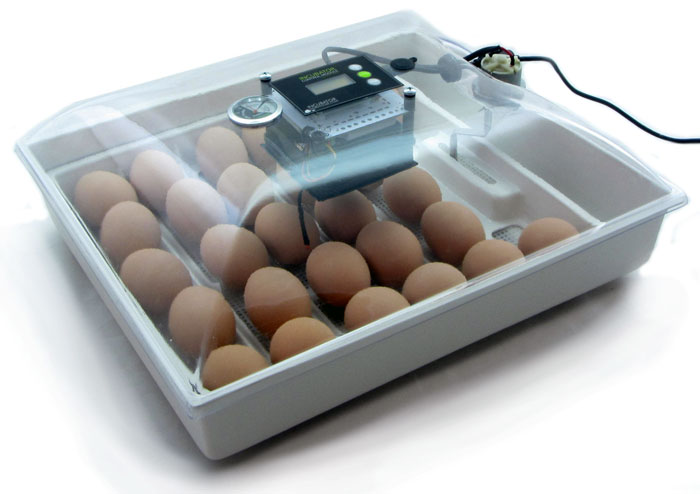 Сколько стоит инкубатор для куриных яиц Факторы влияния на цену 3