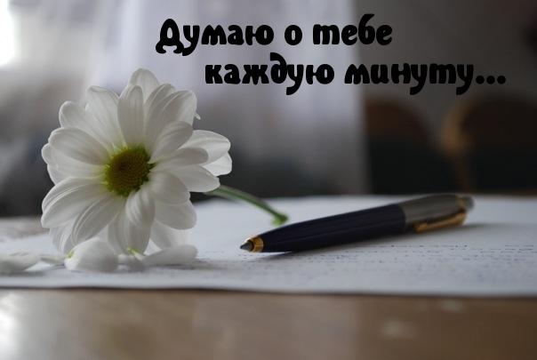 Думаю о тебе - красивые картинки и открытки с надписями 12