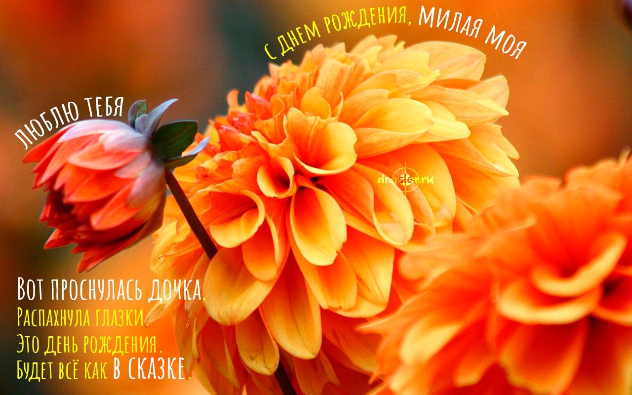 Красивые картинки С Днем Рождения Доченька - милые открытки 7