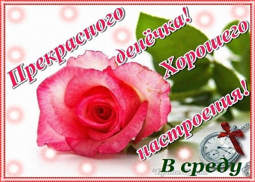 Красивые открытки с пожеланиями хорошего дня среда, текст