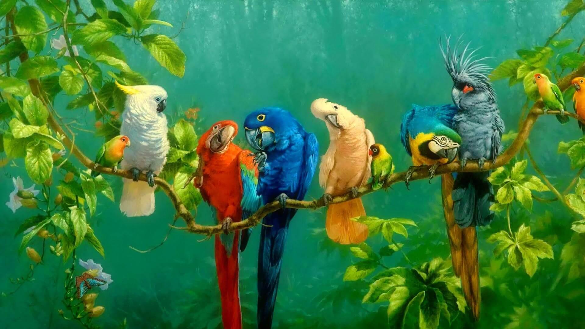 Птички картинки красивые обои на телефон художников, картинки