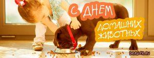 Картинки и открытки с Днем Домашних Животных - очень красивые 7