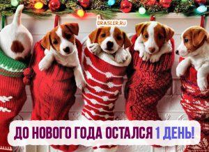 До нового года остался 1 день! - красивые картинки, открытки 9