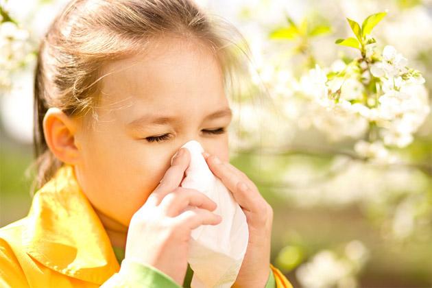 Лечение аллергии народными средствами - лучшие рецепты 1
