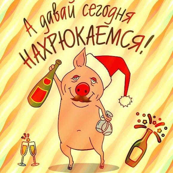 Смешные открытка с новым годом свиньи
