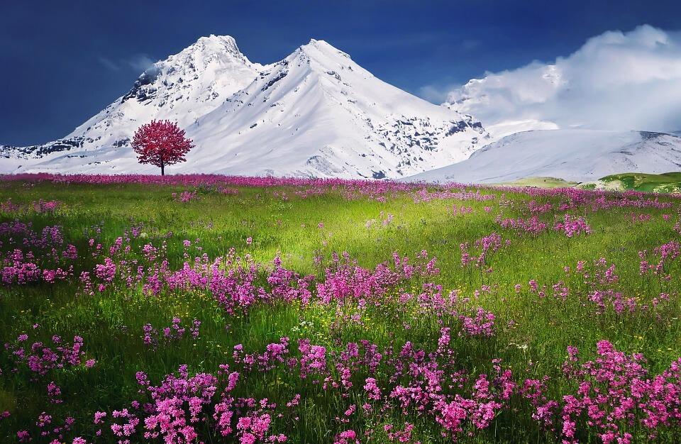 Снежные горы - удивительные картинки и фотографии 8