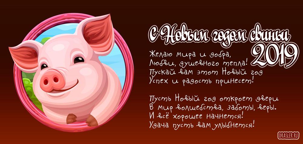 Веселые поздравления на открытках с годом свиньи коллектив, картинки забей работу
