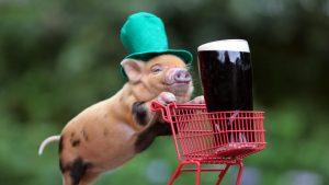 Скачать бесплатно картинки на рабочий стол Новый год свиньи 12