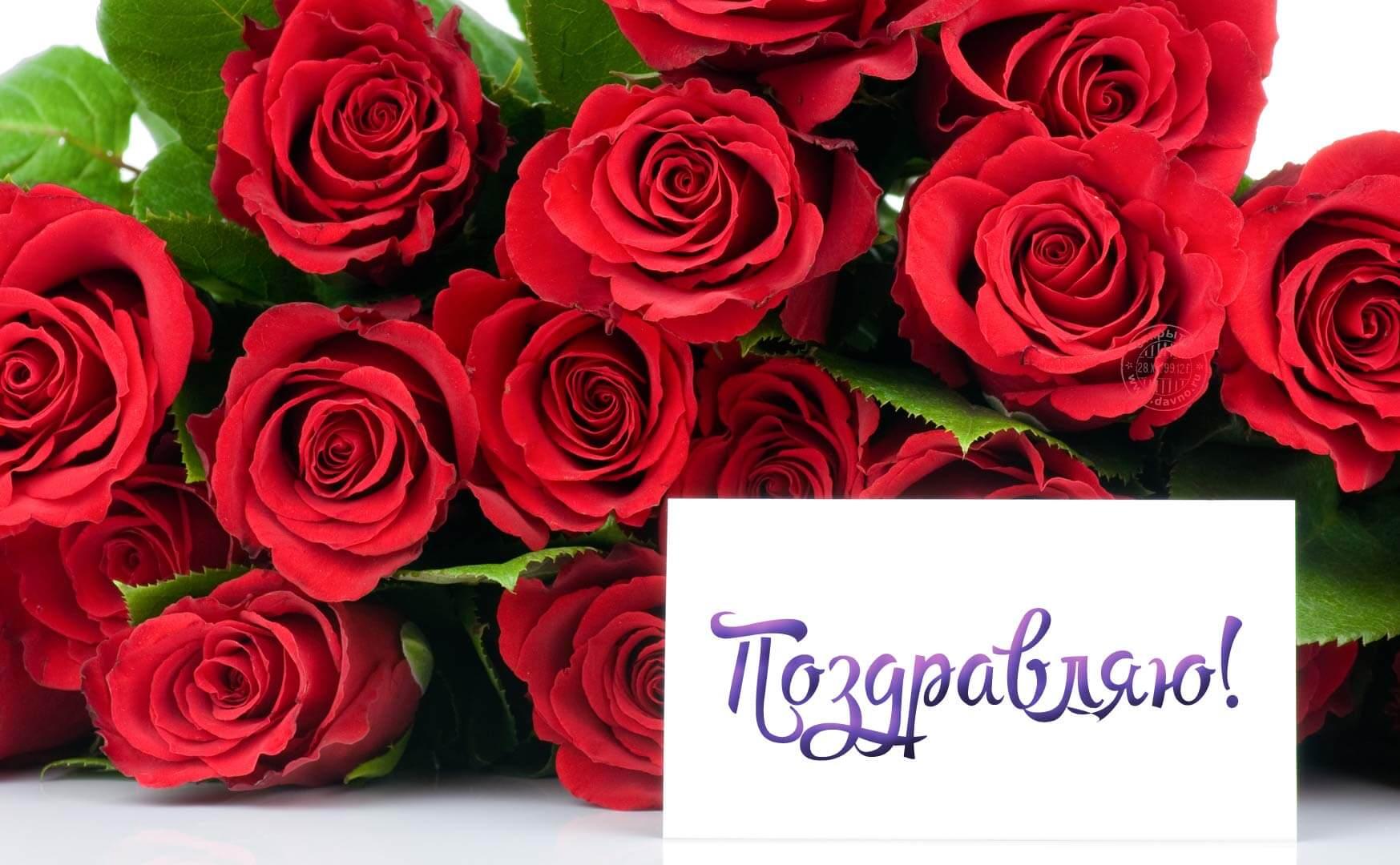 Девочке днем, картинки розы с надписью поздравляю
