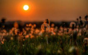 Красивые картинки и обои вечера, затенков - подборка (28 фото) 14