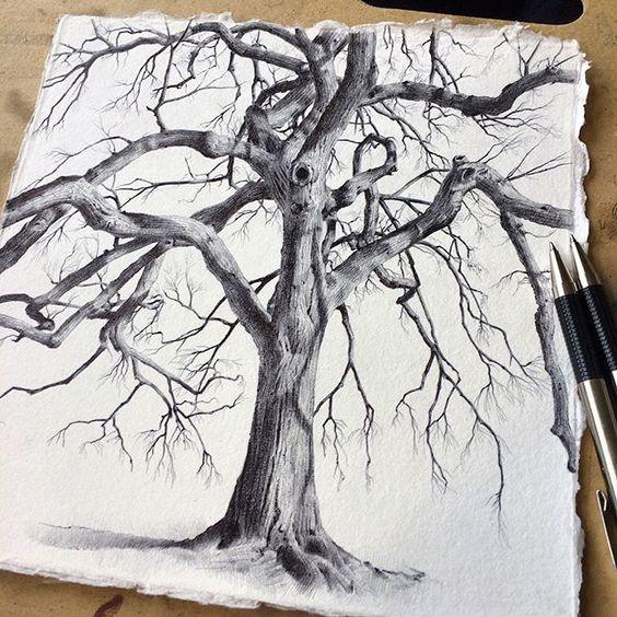 Дерево рисунок прикольная подборка картинок 20 штук (11)