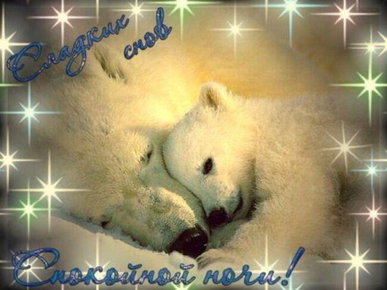 Доброй ночи картинки красивые для любимой   коллекция открыток 20 штук (12)
