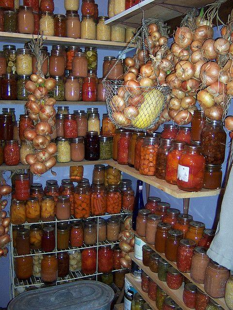 Заготовки на зиму лучшие рецепты бабушки   скачать бесплатно 20 штук (13)
