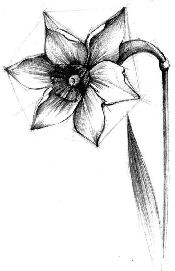 Красивые рисунки для срисовки карандашом   сборка (34 картинки) (29)