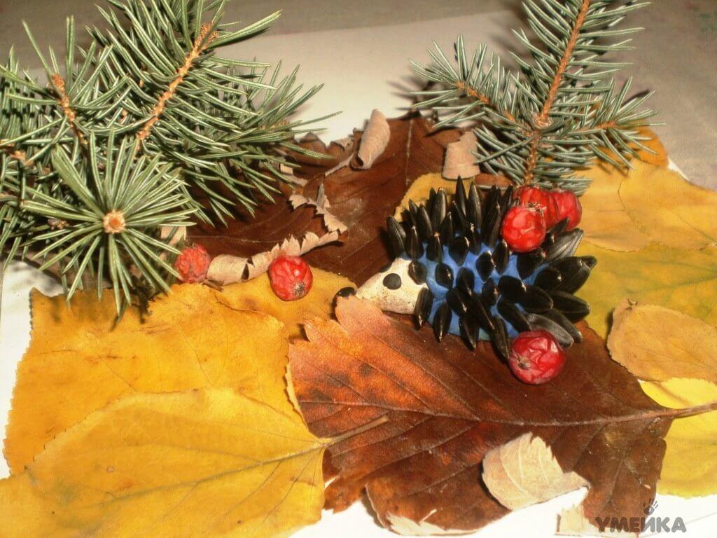 Поделки из природного материала на тему осень для детского сада 22