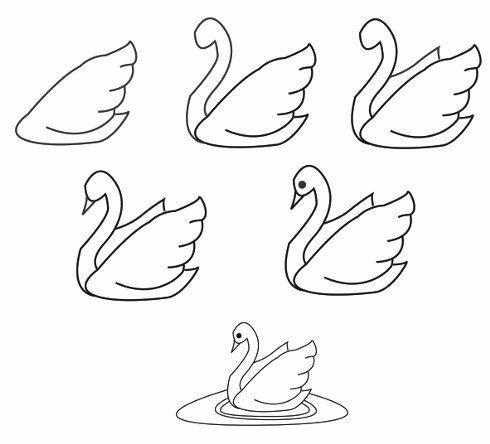 Рисунки для начинающих карандашом   лучшие 35 картинок (11)