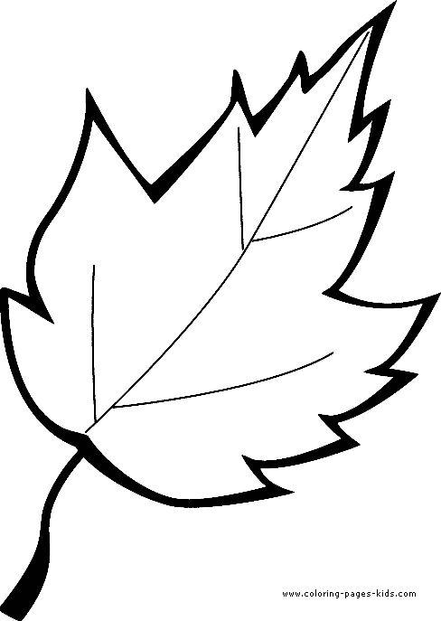 Трафарет листьев для вырезания из бумаги шаблоны   сборка (18 картинок) (1)