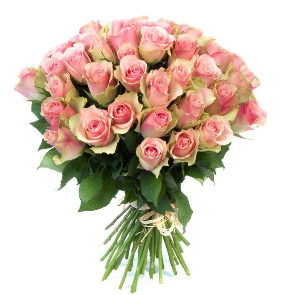 Букеты цветов с днем рождения фото красивые   милая сборка (19 картинок) (12)