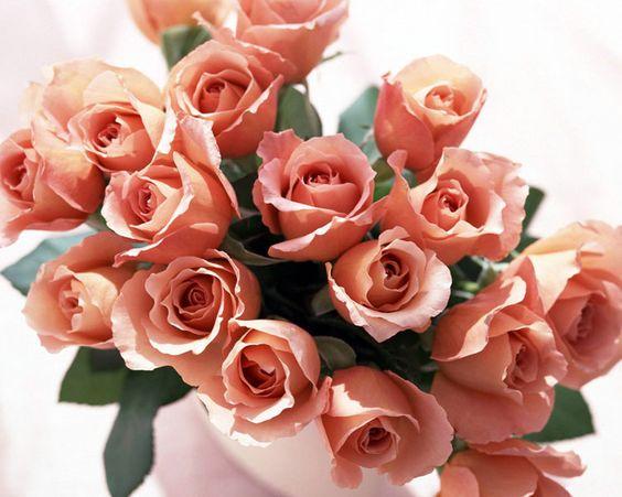 Букеты цветов с днем рождения фото красивые   милая сборка (19 картинок) (14)